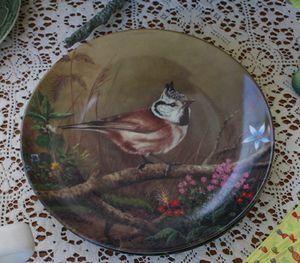 Bird dish 3