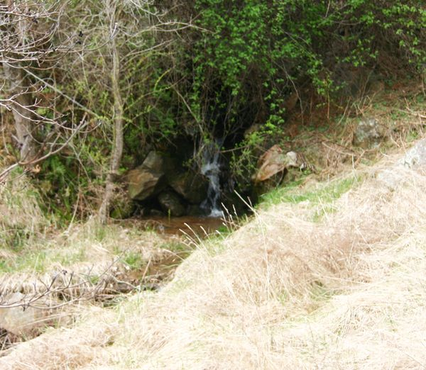Cabin waterfall to stram