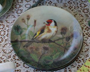 Bird dish 4