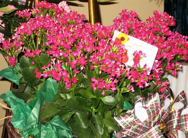 Pink Flower arrangement by Jeanne
