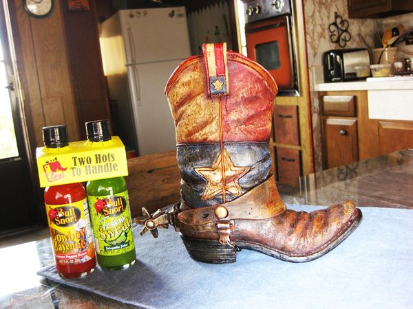 Boot from Texas 2009 2
