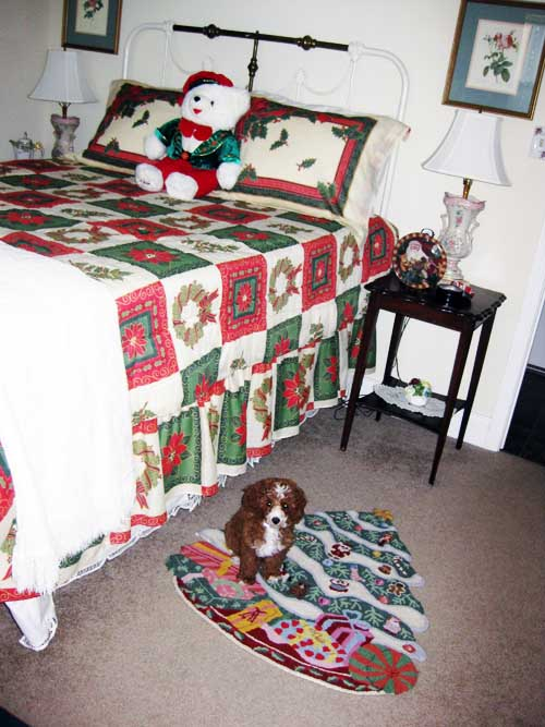 Guest bedroom CC on rugIMG_4190