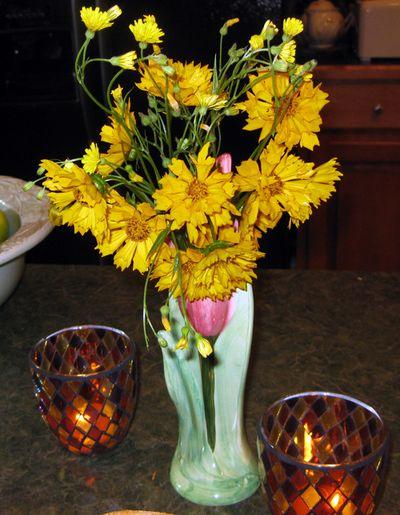 Fri flowers closeup