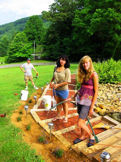 Virginia's watering
