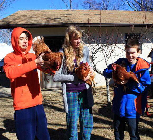 Hens cody ashley logan