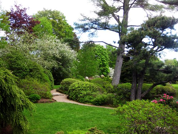 Garden scenr in Maine 8