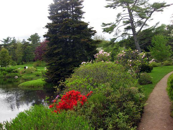 Garden secne Maine 7