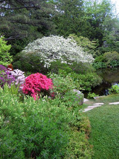 Maine garden part 2 i