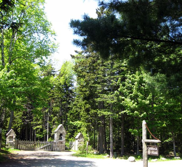 Carraige gate
