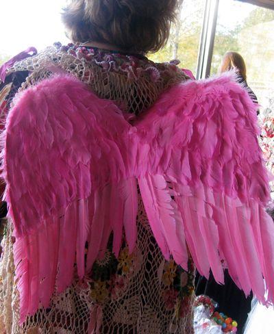 Pink wings KellIy_0434