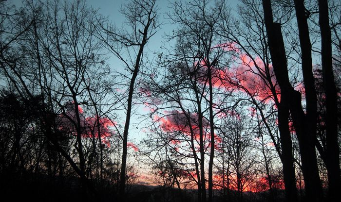 Sunset Walkersjpg