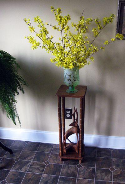 Forsythia in vase
