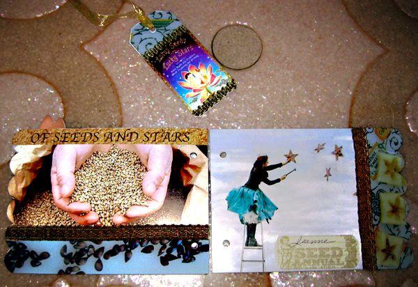 Journal seeds and stars