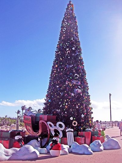 Cruise 2 Christmas tree