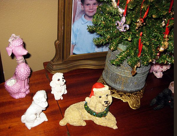 Christmas poodle collection