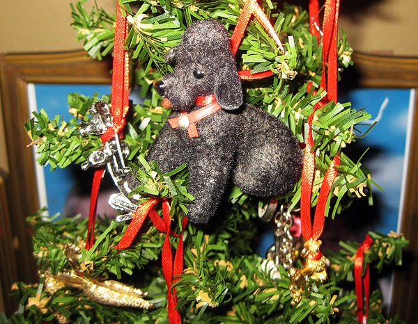 Christmas poodle tree 1