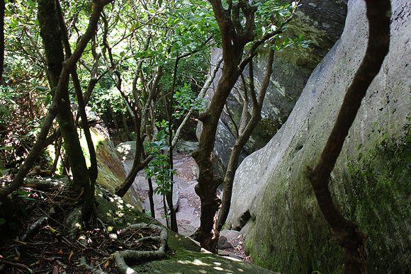 Pickins nose deep ravine