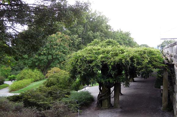 Gardens B 4