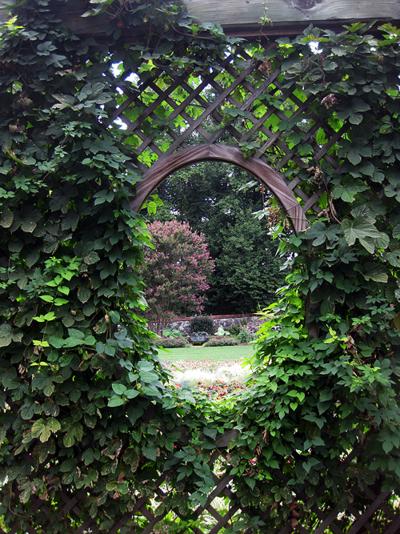 Gardens Biltmore 1