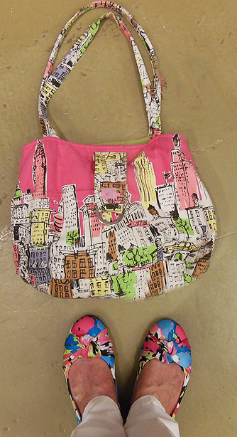 Purse and shoes NY