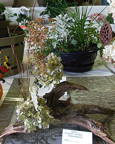 Flower show arrangement