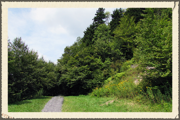 Smnp mountain path