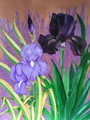 Linda's iris