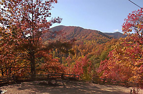 Fall in the NC Mtns