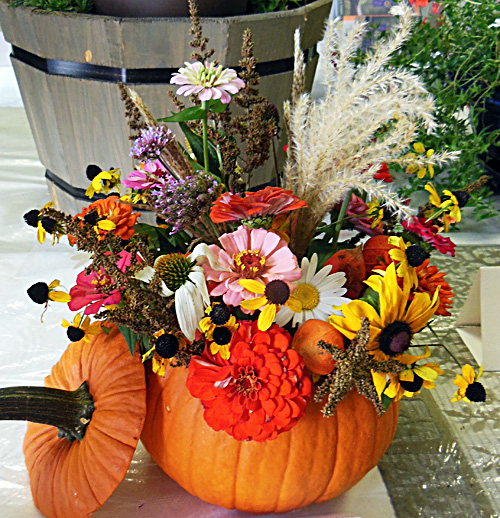 Flower show pumpkin arrangement