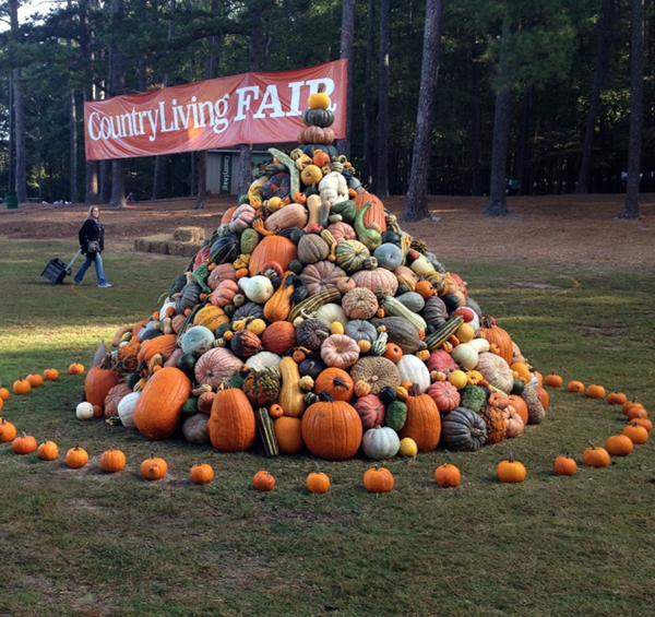 CL Pumpkin pile