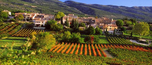 Provence-classic-5n-407-20121004104833