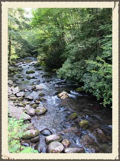 Smnp mountain stream