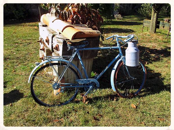 Abbey garden bike