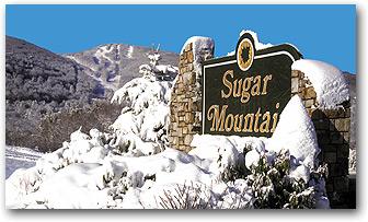 1092580657_sugar1