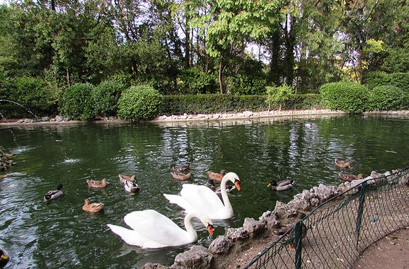 France Olanzac park